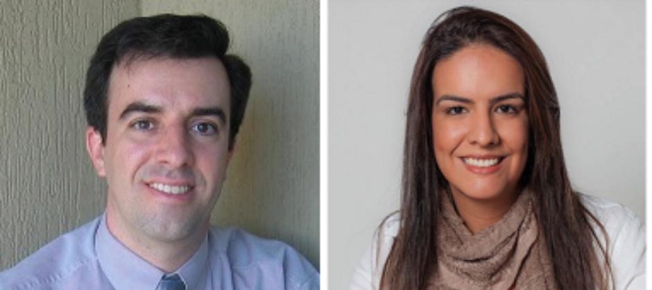 """Imagem do post: Capítulo """"A Economia Comportamental aplicada a Políticas Públicas"""" - Flávia Ávila e Fernando Meneguin"""